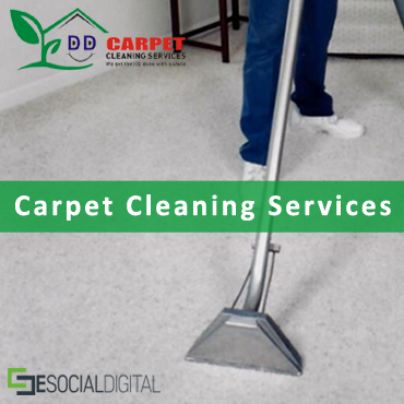 DD Carpet Cleaning Services